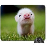 baby-pig-mouse-pad-mousepad