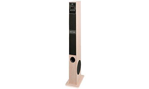 Trevi XT 108 BT Soundtower Altoparlante Speaker Amplificato a Torre con Mp3, Radio FM, USB, Bluetooth, Color Legno Chiaro