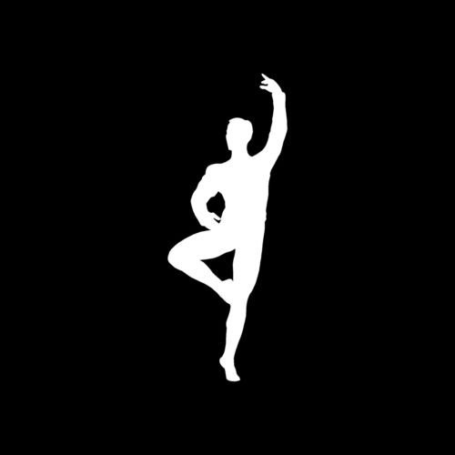 Male Ballet Dancer Sticker Vinyl Decal Class Show Stage Man Couple Duo Cute S4 - Die Cut Vinyl Decal for Windows, Cars, Trucks, Tool Boxes, laptops, MacBook - virtually Any Hard, Smooth Surface Hand Wash Duo
