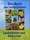 Das Buch der immergrünen Laubbäume und Sträucher