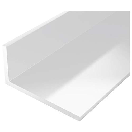 Kunststoff Winkelprofil 60x100mm