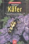 Käfer - Unsere häufigsten und schönsten Arten entdecken, bestimmen, beobachten
