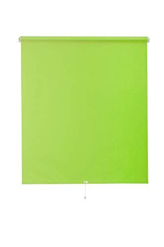 SUNL Ines Spring-Estor Opaco, plástico, Tela, Verde Claro y Blanco, 82 x 180 cm