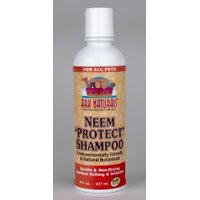 Pack of 2 x Ark Naturals Neem Protect Shampoo -