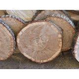KJR Holzmanufaktur Baumscheibe, Holzscheibe,ca. 50x5 cm, basteln, Holz,Eiche