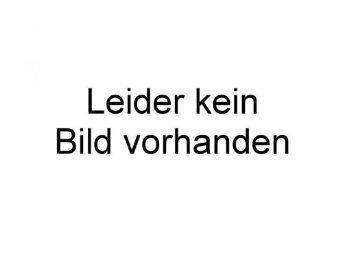 Faller - F161723 - Modélisme - 1 Vorderachse