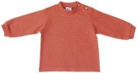 Langarmshirt Baby Jungen Fb. orange 61117409 (86)