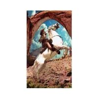 """Bikini everyday cards 5""""x7"""" 2 for 1 Offer!!! Cowgirl on Horse - Greeting Card"""