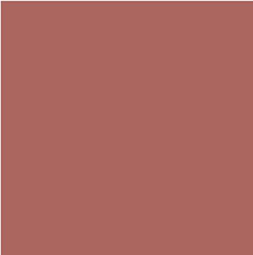 L'Oréal Paris Barra de Labios Color Riche Accords Naturels 379