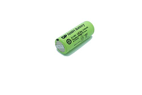 Ersatz Akku GP Batteries von WorldGen® 2100mAh 1.2V 42x17mm für elektrische zahnbürste Braun Oral B typ 3728 und 4736 Professional Care 7000 7400 7550 7850 8000 8300 8500 8850 8900