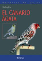 Canarios de color/ Canary with colors: El Canario Agata/ the Agata Canary (Pajaros) por Rafael Cuevas
