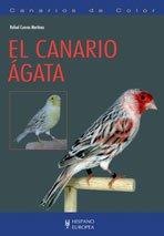 El canario ágata (Canarios de color)