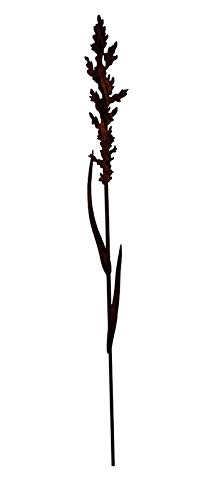 Wunderschöner & Hochwertiger Gartenstecker - Rost Blume/Blumenstecker - Große Auswahl - Edelrost Dekoblume - Metall Gartendeko (Gras - Länge 100cm)