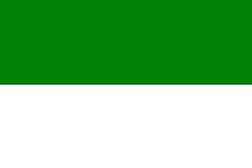 U24 Fahne Flagge Schützenfest Grün Weiß 90 x 150 cm