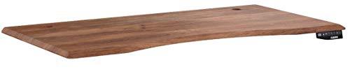 Flexispot stabile Tischplatte 2,7 cm stark - DIY Schreibtischplatte Bürotischplatte Spanholzplatte