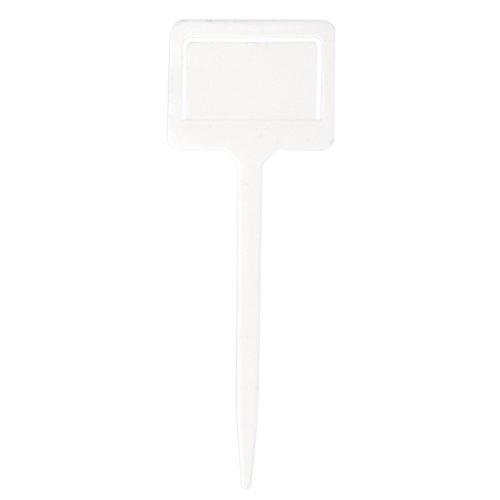 Gazechimp 20pcs Etiquettes Marque Nom en Plastique pour Semences de Plante -Blanc