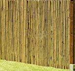 Spezial Bambusschutz / Pflegeschaum