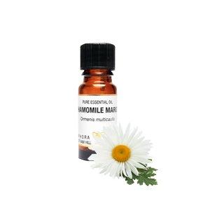 Kamille Conditioner (Kamille Maroc reinem ätherischen Öl in einer 10ml Bernstein Glas Dropper Flasche-beruhigend, beruhigend, entspannend. Traditionell als muskelrelaxans & Haut Klimaanlage)