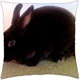 godiva-chocolate-for-bonnie-throw-pillow-cover-case-18