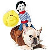 Haustier Kleidung, Hund Katz Cowboy Rider Kostüm, Ritter-Puppe mit Kleid und Hut, lustige Haustier Kleidung für Halloween Partys Thanksgiving Day Weihnachten Verkleiden Sich (M) (Ritter Kostüm Kleid)