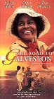 Road to Galveston [VHS] [Import USA]