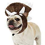 Triceratops Dinosaurier Kostüm für Hunde Katze Party Hut, M(Neck Circumference :11.8