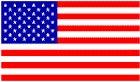 USA 2014 FIFA Flag Tee (Red) -