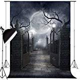Five EWARE Fotohintergrund für Halloween, Party, Dekoration, Studio, Foto-Requisiten, 12,7 x 2,1 m, Halloween