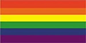 nbow (Gay Pride) Flag 5ft x 3ft (100% Polyester) With Eyelets For Hanging (Gay-pride-dekorationen)