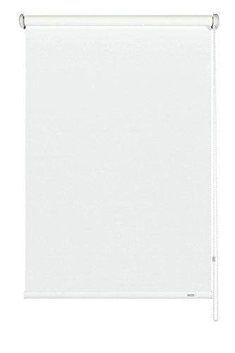 Gardinia tenda a rullo con catenella laterale, installazione a parete, soffitto o nicchia, trasparente, opaca, kit di montaggio incluso, bianco, 142 x 180 cm (lxa)