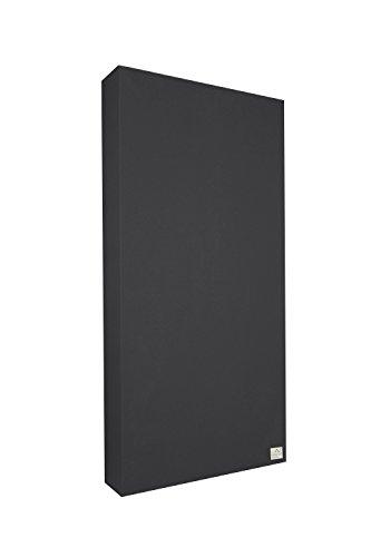 Schallabsorber Standard 100x50x11 cm by Addictive Sound - Raumakustik Akustikbild - Viele Farben - Graphit