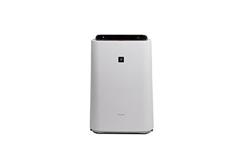 Sharp Home Appliances KCD50EUW - Purificador de aire 306 m³/h, 38 m², 55 dB, 2,5 L, 2 m, Blanco