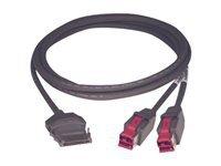 Epson PUSB-Y-Kabel Cable: 010842A CyberData P-USB 3m (EDG) (Usb-drucker-kabel Epson)