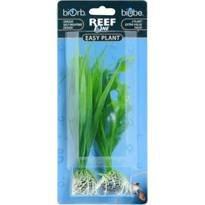 reef-one-biorb-facile-plante-vert-court