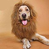 Zantec Generisches Haustier Kostüm Lion Mähne Perücke mit Ohren für Hund Katze Halloween Kleidung Fancy Dress up (Hellbraun, S)