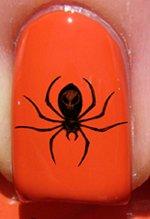 Halloween Crâne araignée - Stickers pour ongles YRNAILS
