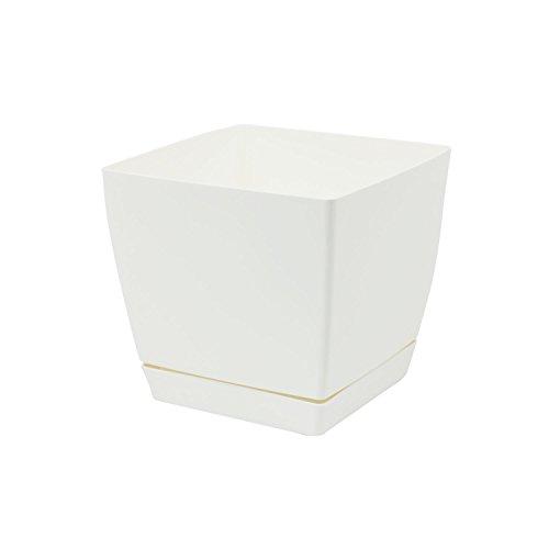 Pot de fleur blanc carré 13 cm plastique Coubi,soucoupe amovilbe