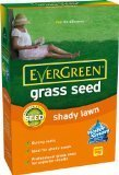 Evergreen Shady Lawn gazon pour zones ombragées 420 g