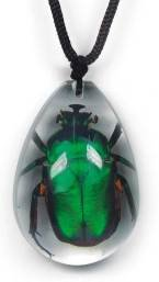 Real Emerald Rose Chafer Necklace CLEAR BLOCK Insect Specimen - PENDANT SIZE 45 x 31mm SD0941 1