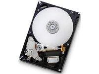 HGST 1TB Hard Drive Unit Bulk, HDT721010SLA360-RFB (Bulk) -