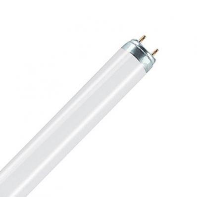 Leuchtstofflampe L 30 Watt / 965 Biolux - Osram von Osram auf Lampenhans.de