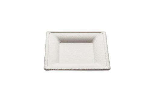Piatto quadrato Design monouso 16 cm - 50 pz - Biodegradabili e Compostabili