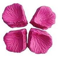 JJOnlineStore - 1000x pétalos de Rosa para la ocasión romántica, decoración de Boda Confetti