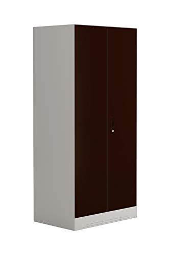 GODREJ INTERIO Slimline 2-Door Almirah with Locker (Glossy Finish, Russet)