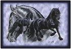 """Tovaglietta da tavola motivo cavallo """"gruppo frisone"""" nuovo misura 40cm x 28cm (23002) Collection Bötzel"""