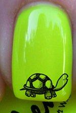 Flan de tortue mignonne - Stickers pour ongles de YRNAILS