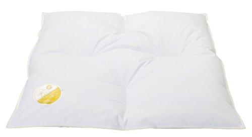 Böhmerwald 289601-35 Baby Daunenbett / 80 x 80 cm /weiße neue Daunen und Federn Klasse 1, 90 % Daunen/10 % Federn/ Wärmeklasse warm