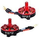 Eleganantstunning Drone Zubehör Brushless Motor (CW) und Brushless Motor (CCW) für Walkera Runner 250(R) FPV Quadcopter Parts Advance Ersatzteile