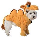 Kamel-Kostüm für Hund