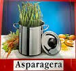 ASPARAGERA PENTOLA CON COPERCHIO PER ASPARAGI NOVA FRABOSK CM 16 INDUZIONE